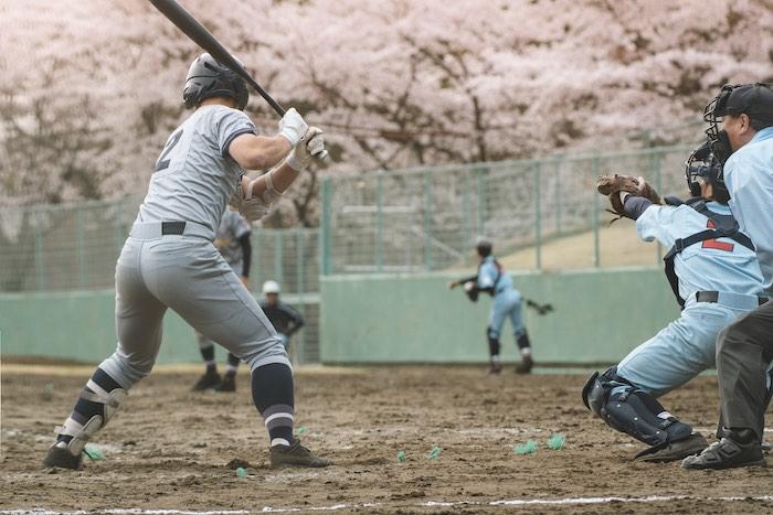 japan baseball league
